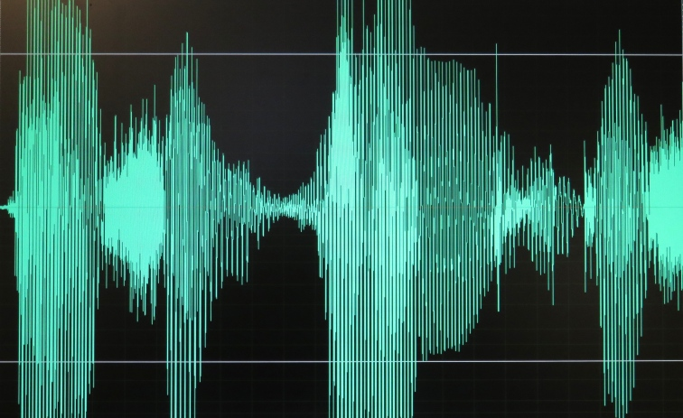 Title picture showing an audio analogue waveform